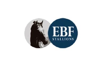 EBFstallions